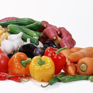 Огурцы, кабачки, патиссоны, морковь, редис и пряные коренья