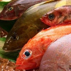 Методы определения качества охлажденной и замороженной рыбы.